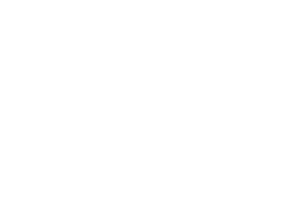 For the Next 100 Years